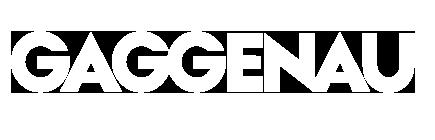 Gaggenau-wit-zelf-omgekleurd